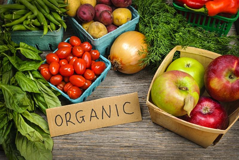 Eating Organic Reduces Pesticide Exposure By 90%