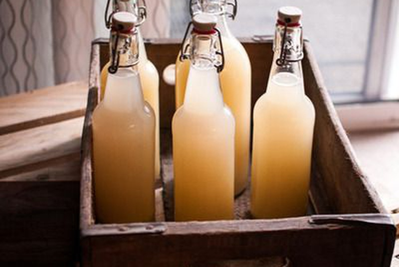 Kombucha: Discover The Secrets Of This Wonder Tea