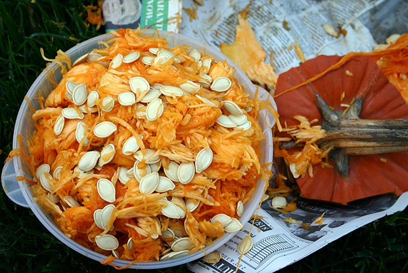 Carving Pumpkins? Keep The Seeds! (9 Amazing Health Benefits)