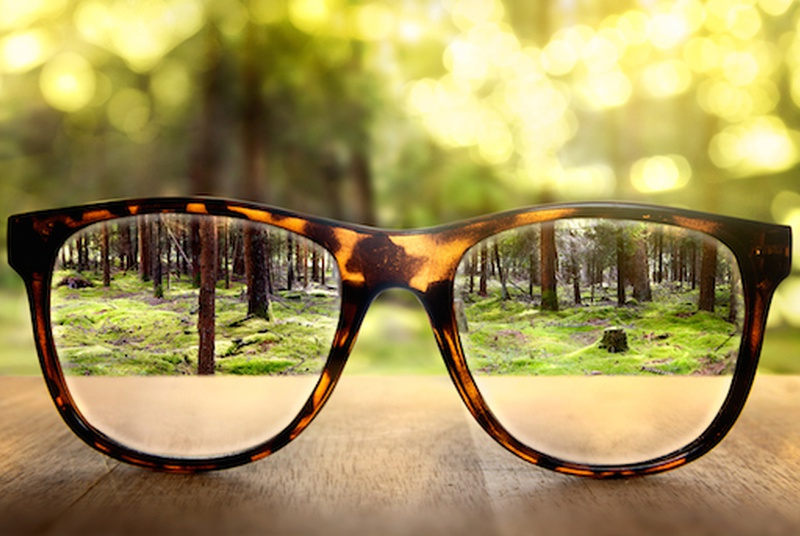 5 Foods To Improve Eye Sight